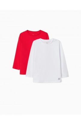 Pack 2 camisetas manga larga NIÑO ZIPPY